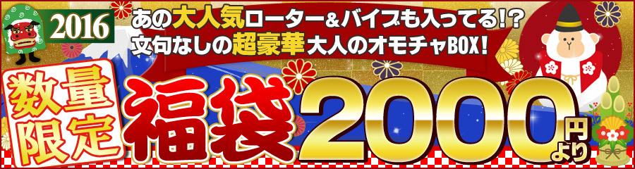アダルト 年末セール!大人のおもちゃ福袋2016!