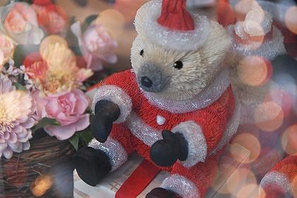 いよいよ来週はクリスマス&Christmas Eve。