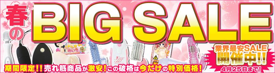 春のBIG SALE~業界最安セール開催中!!